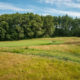 Links at Mass Golf