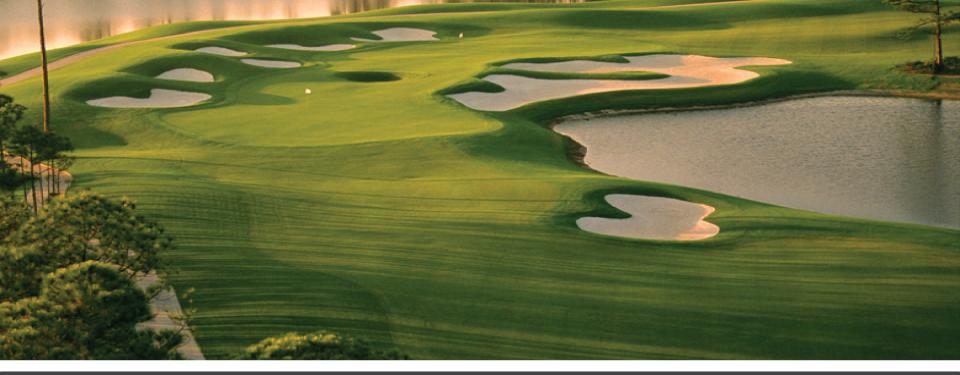 Kelly Plantation Golf