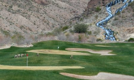 Vici Golf